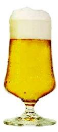 Bicchieri da birra homebrewing le mie birre for Bicchieri tulipano